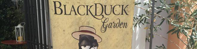 Βlack Duck Garden-Αthens City Museum Bistro